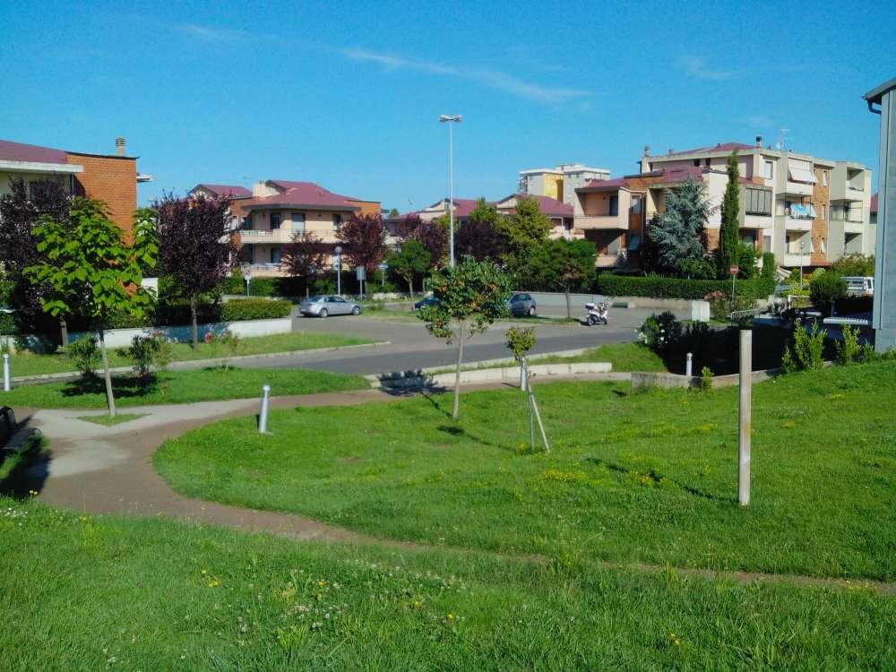 Parco Pubblica Assistenza, Cecina (Li)
